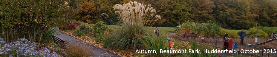 beaumont_park_autumn_1